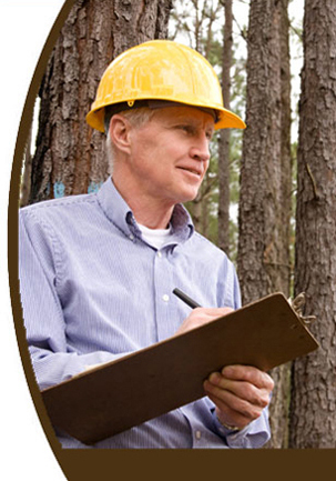 Consulting foresters helping you achieve your long term stewardship goals.